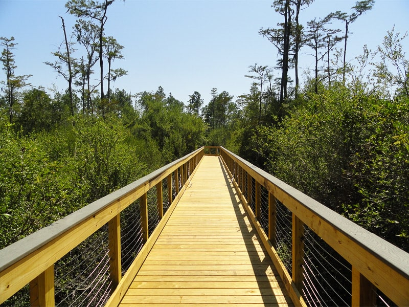 Conserving nature through trails